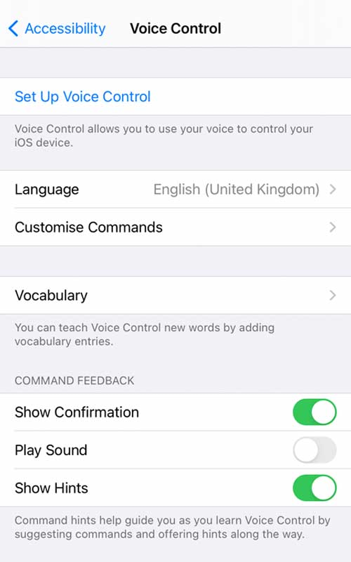 Set up screen to unlock iPhone voice command gesture.